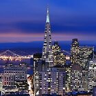 San Francisco skyline at night panorama 2 by Can Balcioglu