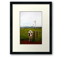 Windy Hill, Ravenshoe Framed Print