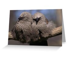 togetherness ... Greeting Card