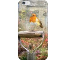 Spring Robin iPhone Case/Skin