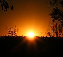 Summer Sunrise by binjy