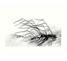 Winter Dune Grass Art Print