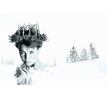 Snow Queen of Narnia Photographic Print