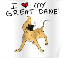 Great Dane Lover Poster