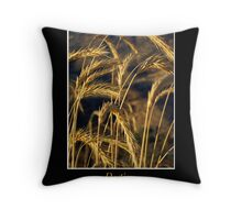 Destiny Within Your Grasp Throw Pillow
