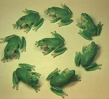 Green Tree Frog Circle by John Hansen