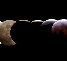 Stages of the Lunar Eclipse by jkar866