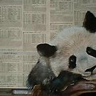 Panda Bear - Endangered Species Awareness Art by Cherie Roe Dirksen