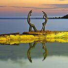 Cabbage Tree Bay by David Smith