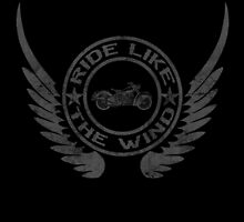 Ride like the wind by Stevie B