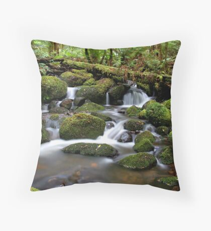 Twin Waters Throw Pillow