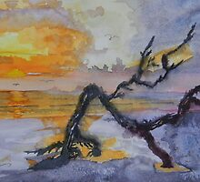 Cumberland Island Sunrise by Warren  Thompson