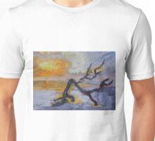 Cumberland Island Sunrise Unisex T-Shirt