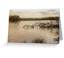 Swan River from The Esplanade, Ascot, Perth, W.A. Greeting Card