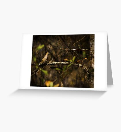 In the Brush Greeting Card