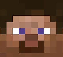 Minecraft Steve Face by janeemanoo