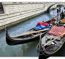 ..Venice..never disappoints you.. by John44