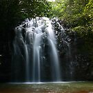 Ellinja Falls, Far North Qld by Julie Just