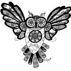 Black and White Owl in Flight by themighty