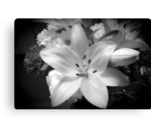 White lily flower Canvas Print