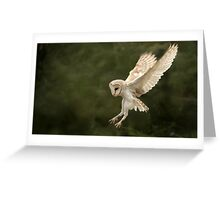 Flight of the Barn Owl Greeting Card