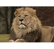 King! Photographic Print