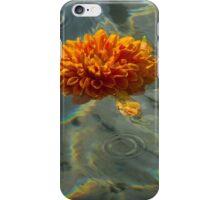 Liquid Rainbows – Floating Chrysanthemum Blossom in the Sunshine iPhone Case/Skin