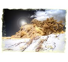 Gilded Hill Photographic Print