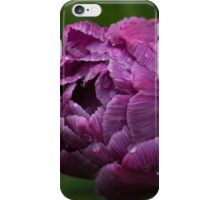 Stripes, Raindrops and Petals iPhone Case/Skin