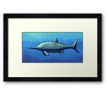 Ichthyosaurus communis Framed Print