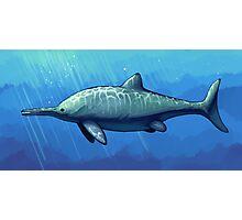 Ichthyosaurus communis Photographic Print
