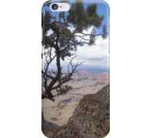 Treeview, Grand Canyon iPhone Case/Skin