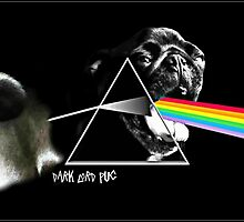 pug floyd by darklordpug