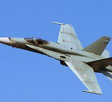 CF-18 by Sandy  McClearn
