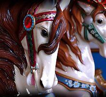 Carousel Horses by Ryan Houston
