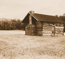 Kelly House - Chickamauga and Chattanooga Nat Milt Pk, converted to albumin by shotzbyjay