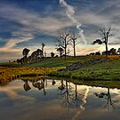 Australian Landscapes by David Haworth