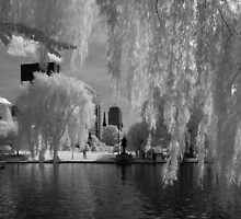 Boston Lagoon Infrared 1 by Troy Dodds