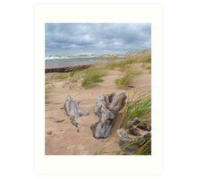 Windy Michigan Beach Art Print