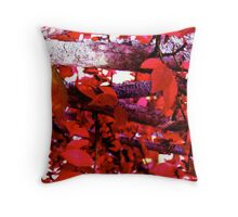 red.... Throw Pillow