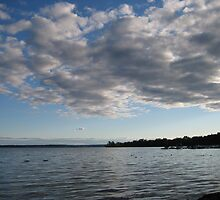 Saratoga Lake At Dust by colleen