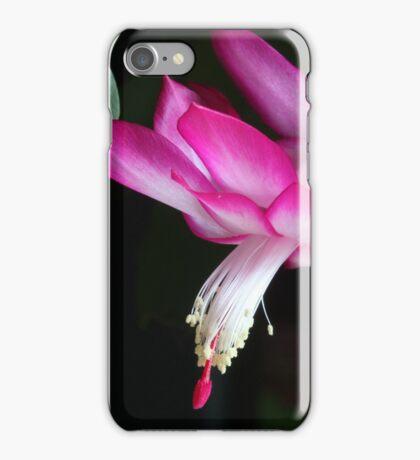 Christmas Cactus November 2014 1 iPhone Case/Skin