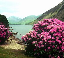 Wasdale by Deborah  Bowness