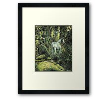 Unicorn & Pixies Framed Print