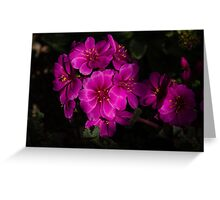 Shocking Pink and Fuchsia - a Vivid Succulent Bouquet Greeting Card
