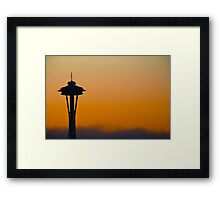 Golden Needle Framed Print