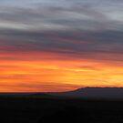 Desert Sunset by J. Sprink