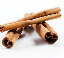 Cinnamon Sticks by SeeOneSoul