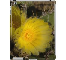 Sol y Sombra - Sun and Shade iPad Case/Skin