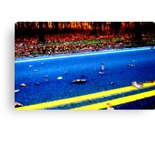 Across The Street Canvas Print